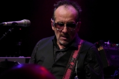 elvis-costello_28147376682_o
