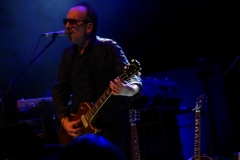elvis-costello_28217300576_o