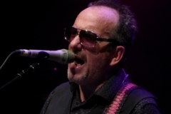 elvis-costello_28251388225_o