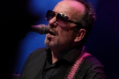 elvis-costello_28251400865_o