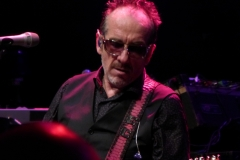 elvis-costello_28251411885_o