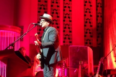 elvis-costello_9010693315_o