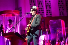 elvis-costello_9010746421_o