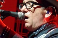elvis-costello_9011865002_o