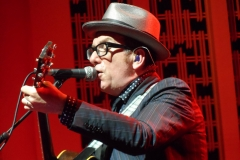 elvis-costello_9011871068_o
