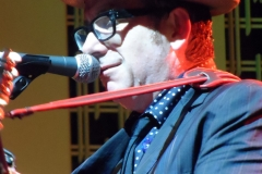 elvis-costello_9011920930_o